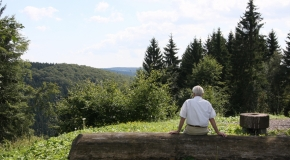 Frauenwald im Sommer (15)