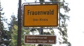Frauenwald im Sommer (8)
