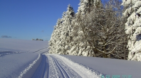 Frauenwald im Winter (1)