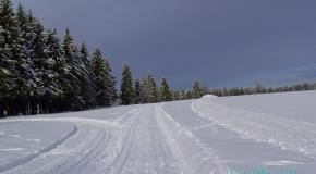Frauenwald im Winter (11)