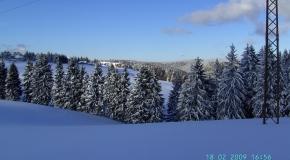 Frauenwald im Winter (15)