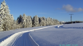 Frauenwald im Winter (16)